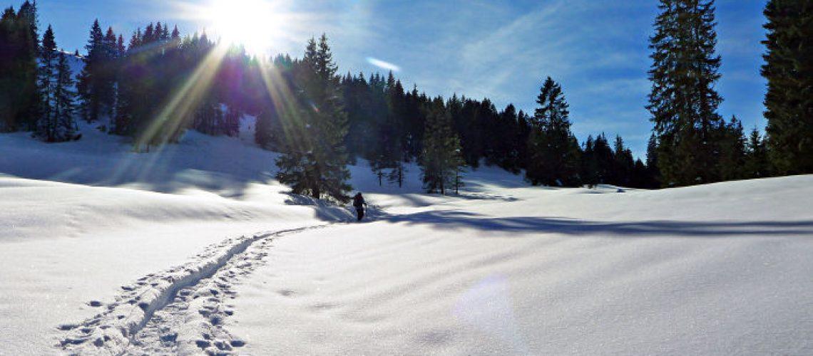 Winterlandschaft_Nolle_Emmental